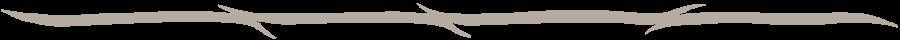 Katoen:garen van lange vezels
